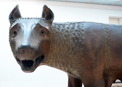 Capitoline She-wolf, detail