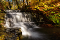 La cascada (Tabernilla (David Izaguirre)) Tags: españa david rio nikon europa bosque otoño tamron cantabria 2470mm d610 ucieda davidizaguirre tabernilla