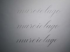 Maestra en tipografa (RoballosNaab Caligrafa) Tags: typography buenosaires master calligraphy specimen tipografa caligrafa uba fadu maestra roballosnaab