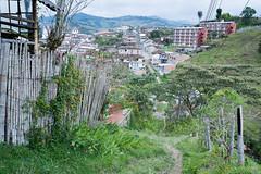 Colombian Vertigo 2015- www.wmaisy.com -26 aout 2015 -251.jpg (Wilfried Maisy Photojournaliste) Tags: photography photojournalism co antioquia colombie photojournalisme salamina photographiehumaniste photographiedocumentaire