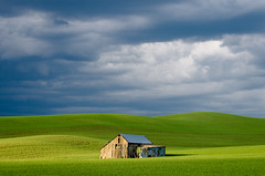 _DSC3176-4 (Brian.Schick) Tags: palouse minimalism abstract