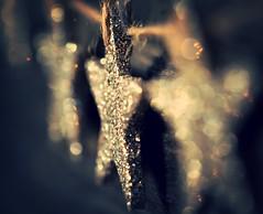 The Glitterati (Tracey Rennie) Tags: christmas decorations glitter gold star holidays bokeh garland glitterati macromondays thebeautyofbokeh