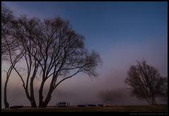 Amanecer neblinoso en el rio