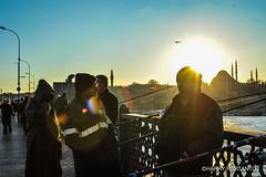 Great Fishing (Harry Hartanto) Tags: travel traveler traveling travelphotos travelmagz turki turkey istanbul galata birdge indonesia nikon d3 iamnikon nikonindonesia street goldenhour sunset winter cold