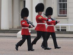 Img555022nx2 (veryamateurish) Tags: unitedkingdom british military army london wellingtonbarracks changingoftheguard publicduties ceremonial guardmounting newguard footguards householddivision grenadierguards