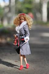 Изображение 018 (Dalekaja) Tags: barbie madetomove fashionistas fashiondolls