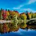 Autumn Colour on Centennial Park Lake