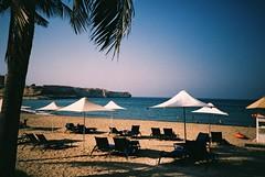 Muscat (cranjam) Tags: lomo lca lomography film slide xpro kodak elitechrome100 sultanateofoman oman middleeast shangrilabarraljissah shangrila hotel beach spiaggia palmtrees palme mare sea gulfofoman