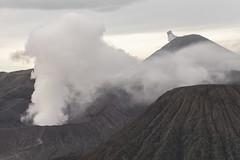 Volcanic activity in the morning (Hans Makkee) Tags: bromo tengercaldera semeru volcano vulkaan java indonesia indonesie