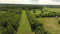 DJI_ (465) (360TV) Tags:   forest