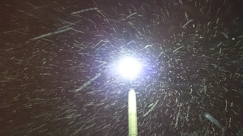 Snow and Street Lamp