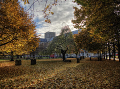 Winchester Cathedral in Autumn (neilalderney123) Tags: 2016neilhoward olympus cathedral winchester leaves trees autumn fall graveyard hampshire