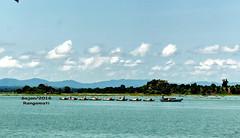 Kaptai Lake (sajan164) Tags: kaptai lake manmade largest waterbody rangamati chittagong bangladesh sajan164