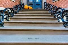 """Please Smile"" ((Jessica)) Tags: stairs pleasesmile pumpkin leadinglines vanishingpoint wideangle graffiti boston historic massachusetts newengland brownstones a6000 rokinon sony rokinon12mm 12mm southend"
