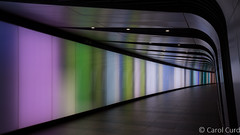 The Tunnel (Carol Curd) Tags: london kingscross tunnel lightwall pedestrianwalkway