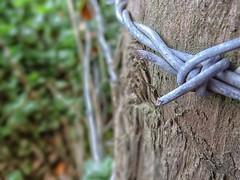 Fencework. (darrenboyj) Tags: fence metal post enclosed autumn autumnal wood splinters shards