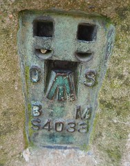 Trig point face (debs-eye) Tags: devilsdyke southdowns iseeaface benchmark trigpoint