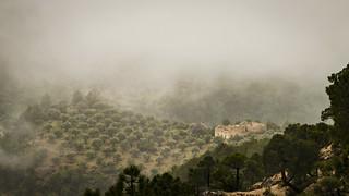 Ruinas en la niebla