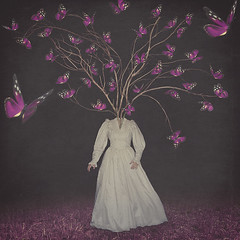 Gathering of the Army (Margherita Introna Photography) Tags: margheritaintrona fineart conceptual conceptualphotography fineartphotography surreal fairytale butterflies chasingbutterflies