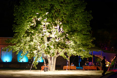 "CCCamp 2015 (050) • <a style=""font-size:0.8em;"" href=""http://www.flickr.com/photos/36421794@N08/20354034269/"" target=""_blank"">View on Flickr</a>"