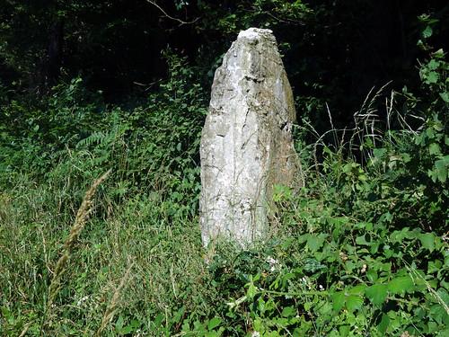 Le menhir dit « La Roche » près d'Uzel - Côtes-d'Armor - Juillet 2015 - 03