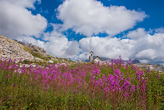 "La Chiesetta della ""Madonna della Croda"" (marypink) Tags: flowers summer sky mountains church clouds montagne estate fiori nikkor unescoworldheritage chiesetta dolomitidisesto nikond800 nikkor1635mmf4 madonnadellacroda percorsodelletrecime"