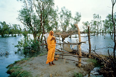 woman in nijhum dweep MW018175 (shahidul001) Tags: trees sky woman storm color colour home horizontal clouds island daylight aftermath women asia day wind debris disaster land 1991 submerged damaged winds destroyed cyclone bangladesh devastation developingcountry developingcountries calamity destroy catastrophe flooded naturaldisaster bamboopoles southasia thirdworld chittagong ruralhome devastated tropicalcyclone majorityworld april29th 29thapril wreckages bangladeshiwoman nijhumdwip 1991cyclone