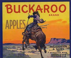 "Buckaroo • <a style=""font-size:0.8em;"" href=""http://www.flickr.com/photos/136320455@N08/21460727862/"" target=""_blank"">View on Flickr</a>"