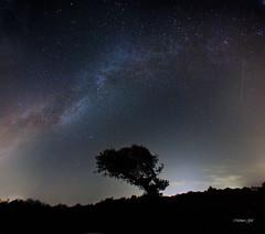 milky way (mehmetgul72) Tags: life wild sky night canon dark stars nightshot astrophotography 16mm astra milkyway