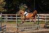Doorn (Steenvoorde Leen - 2.7 ml views) Tags: doorn arreche paarden horses springen jumping hindernis fench halloween 2015 happyhalloween manege horse pferd reiten paard pferde haloween utrechtseheuvelrug manegedentoom cheval
