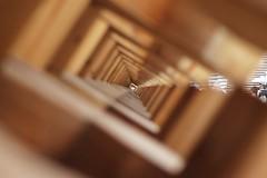 details - dettagli (immaginaitalia) Tags: life wood food milan detail japan expo milano 15 universal giappone cibo pavillion vita legno esposizione joints dettaglio 2015 universale padiglioni incastri esposition