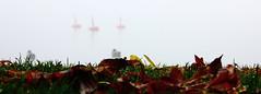 Horisont (shemring) Tags: dimma horisont fotosondag fotosöndag fs151018