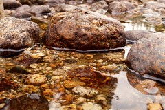 Tuolumne River Rocks (Yosemite Love) Tags: mountains nature rocks yosemite rivers yosemitenationalpark riverrocks ynp tuolumnemeadows tiogapass tuolumneriver sonya58 yosemitelove925
