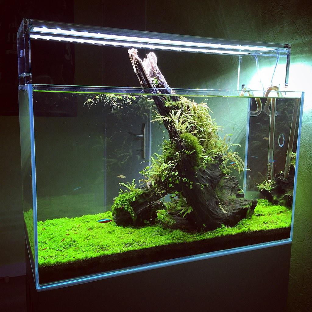 the world 39 s newest photos of aquasky flickr hive mind. Black Bedroom Furniture Sets. Home Design Ideas