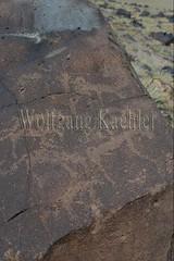 30095304 (wolfgangkaehler) Tags: old animal animals rock asian ancient asia desert mongolia centralasia petroglyph gobi blackmountains petroglyphs ibex mongolian gobidesert southernmongolia
