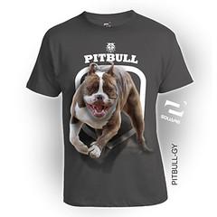 PITBULL-GY (squareteesbdg) Tags: dog square 3d pitbull kaos anjing binatang