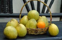 Grapefruit nipping at your nose (captchaos) Tags: fruit juicy juice tropical grapefruit citrus sour davao
