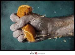 orange jour 3 (dios photographie) Tags: orange fruits fruit gravit presser lamain