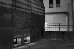 basement windows, Bolender Center 2015 (Clay Percy) Tags: blackwhite bw buildings urban urbanlandscape concrete city