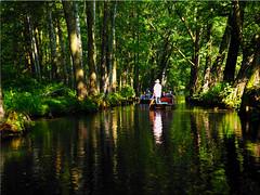 Kahnfahrt im  Spreewald (Ostseetroll) Tags: brandenburg deu deutschland geo:lat=5187198428 geo:lon=1400733669 geotagged lehde spreewald spreewood wasser water spiegelungen reflections kahnfahrt bume trees wald