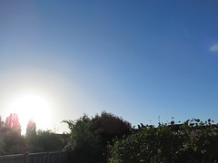 Friday, 30th, Clear blue skies IMG_7671 (tomylees) Tags: essex morning autumn september 2016 30th friday weather blue