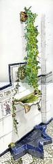 La fuente del patio (Trushoo) Tags: castro castrodelro crdoba colejio vistas patio azulejos campanillo puerta vidrieras villa