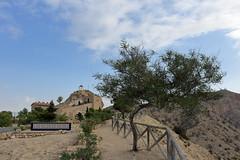 Paisaje rural (joseviparra) Tags: orito arbol tree olivo olive rural ermita hermitage