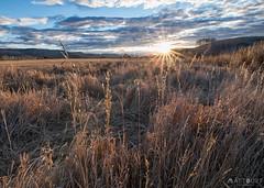 IMGP4785-Edit (Matt_Burt) Tags: sunrise tomichicreek wmountainranch highlights backlight grass ranch field pasture fall autumn season alfalfa hay clouds colorado agriculture flare sunburst