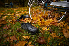 Leave your shoes at the door (Bent Velling) Tags: bstns sweden sverige oldcars rust wreck shoes bike autumn leaves color sonya7r fe1635mm bentvelling