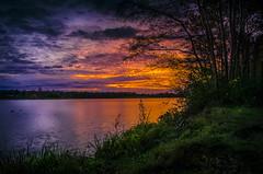""" Sunset Dreiländersee "" (Kalbonsai) Tags: color nikon outdoorphotography 1685mm naturshot d5100 sunset zonsondergang trees waterscape sky"