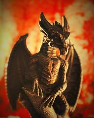 dragon (flowergirlaaa) Tags: dragon lair backlight halloween scary myth mythicalanimal beast meta macro fire