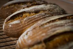 Nussbrot (keeperofthegreens) Tags: walnut walnuss brot bread