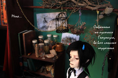 3 Фотоистория Эликсир (Anima_Sol) Tags: bjd dod dollzone benjamin shall photostory witch