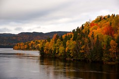Fall colours, Bay of Islands, Newfoundland. (GWP_Photo) Tags: newfoundland bayofislands humber river fall colour nikon d750 nikkor 24120